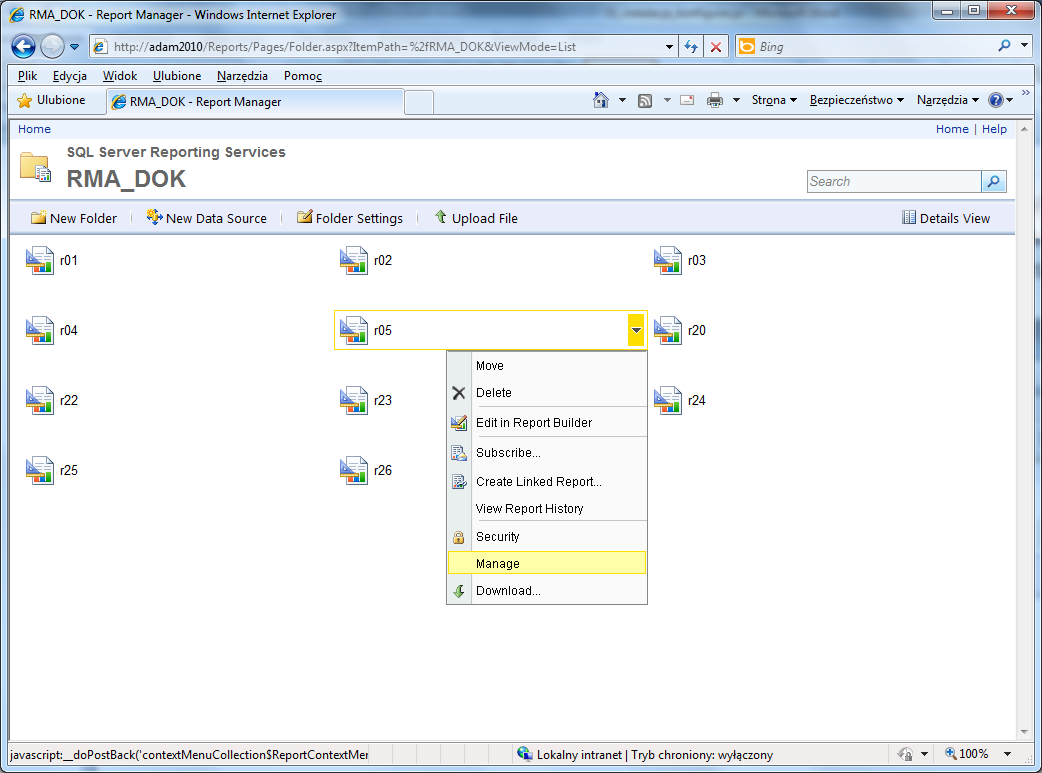 sql server reporting services raporty