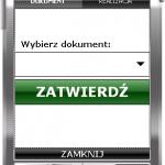 ESM_WZ_SS
