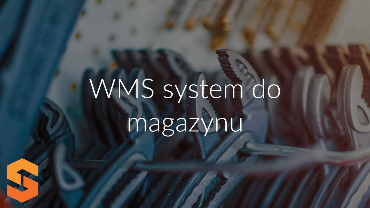Kiedy warto korzystać z WMS. Jaki program magazynowy w procesach zarządzania magazynami?